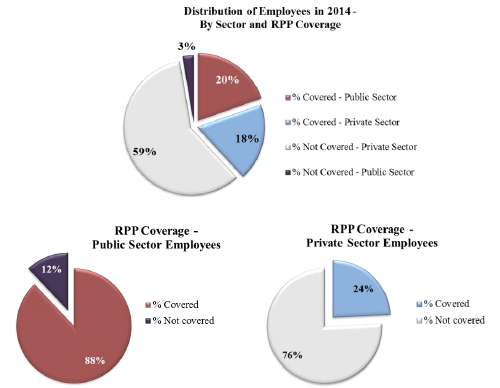 RPP By Sector of Activity (2013)